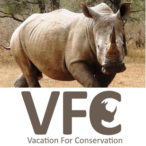 Fund a rhino picture