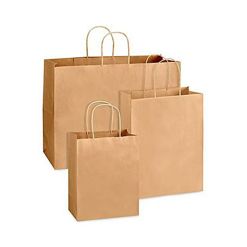 100 paper bags picture