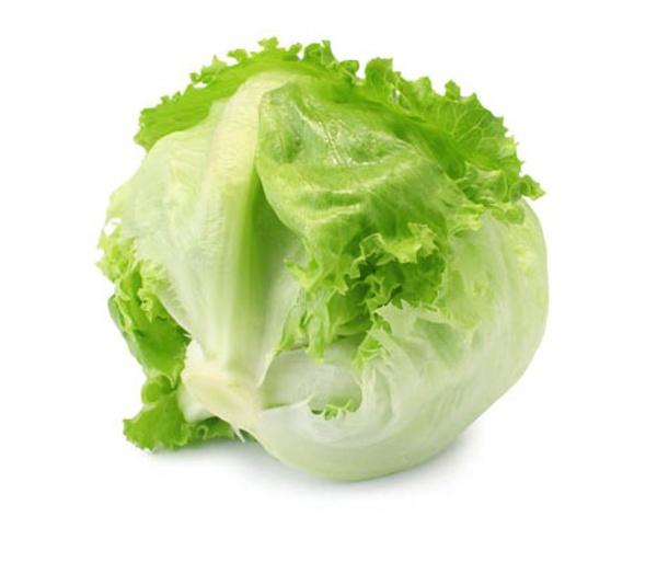 Lettuce picture