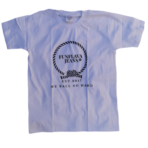 Flava logo gents round neck tees (on sale) picture