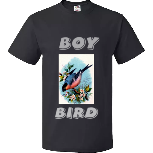 Boy bird t-shirt. whatsapp to confirm order picture