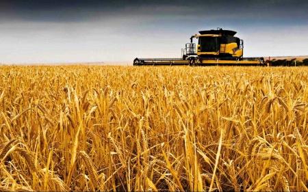 Agro Division picture
