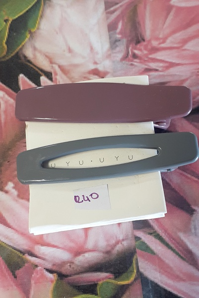 2pc hair clips picture