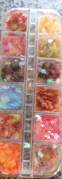 Leaf art case picture