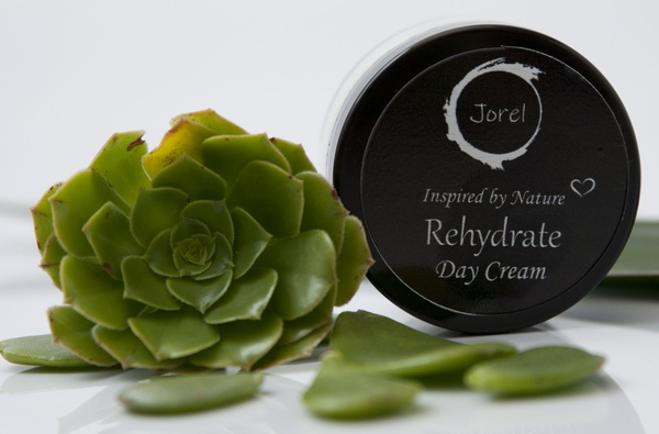 Rehydrate day cream picture