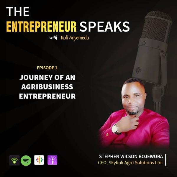 The entrepreneur speaks picture