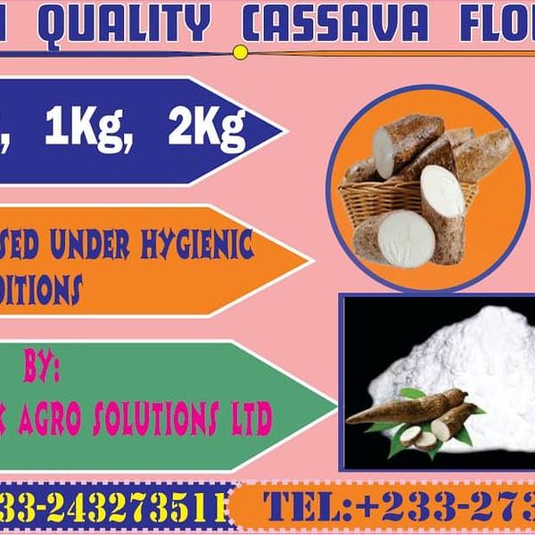 Quality cassava flour picture