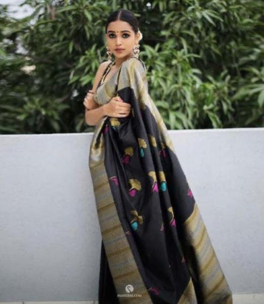 Silk ari picture