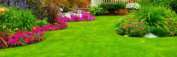 Landscaping & instant lawn picture