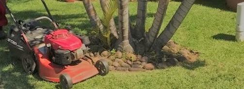 Garden Maintenance picture