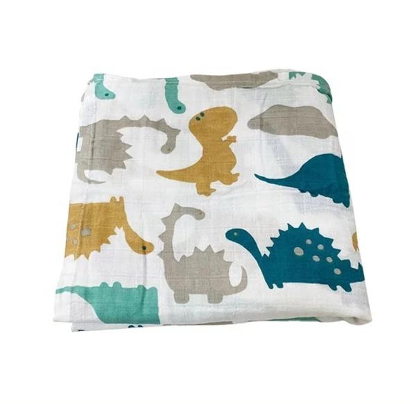Dinosaur muslin blanket picture
