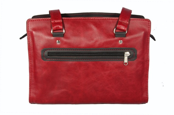 """anna"" handbag picture"