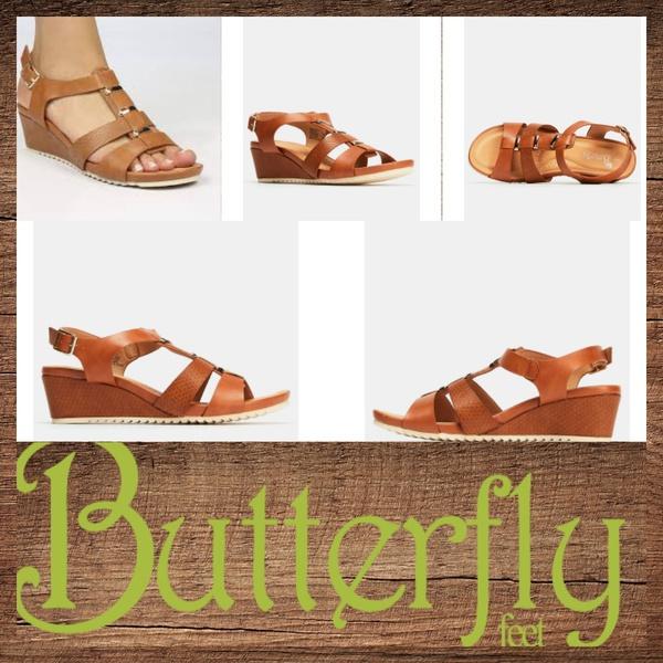 Butterfly monatgue picture