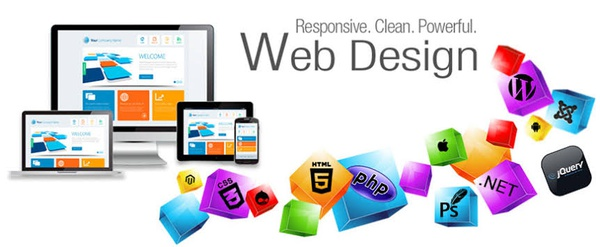 Website Designing & E-commerce picture