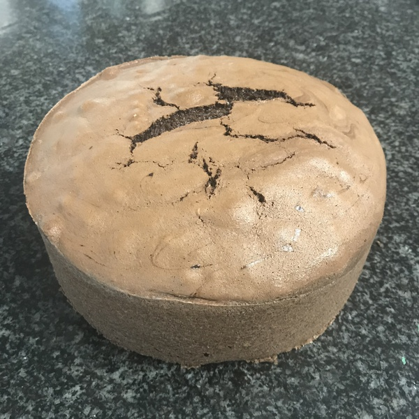 Chocolate sponge cake 20cm round picture