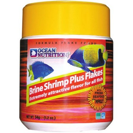 Brine shrimp plus flakes picture