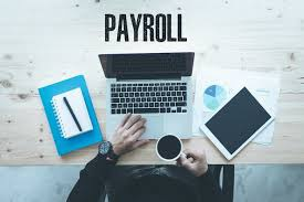 Monthly payroll management (10 - 20 employees ) picture