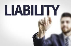 Personal liability company inc picture