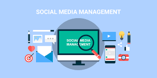 Social Media Management picture