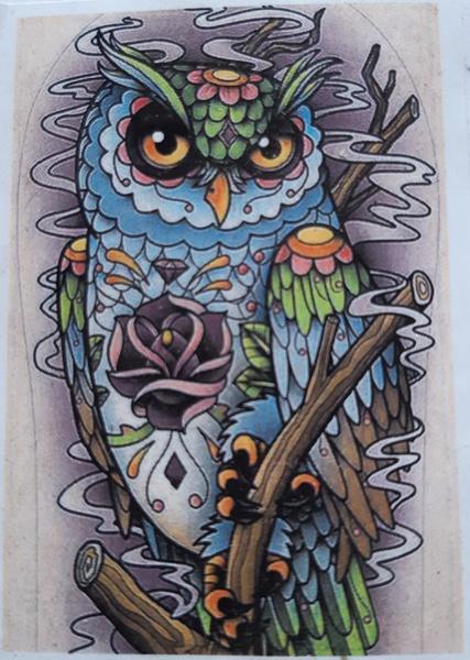 Diamond painting : owl picture