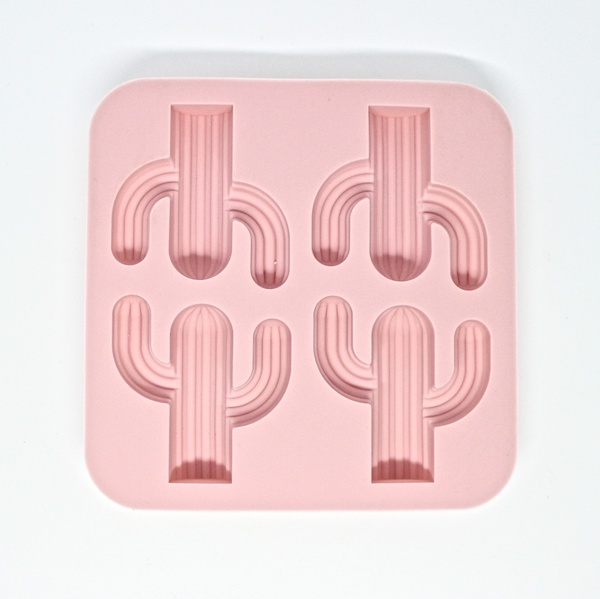 Cactus silicone mould picture