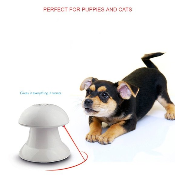 Twirl twist pet trick toy - hours of fun for your fur baby! picture