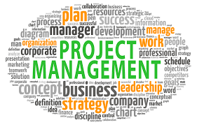 Project Management Services picture
