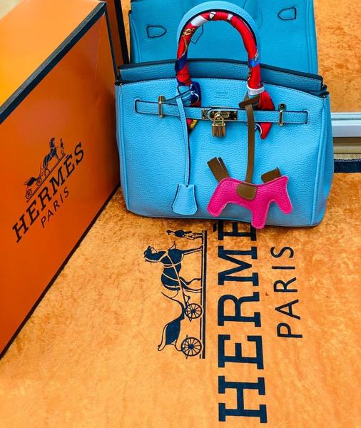 Hermes handbags picture