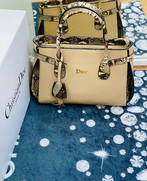 Dior handbags picture