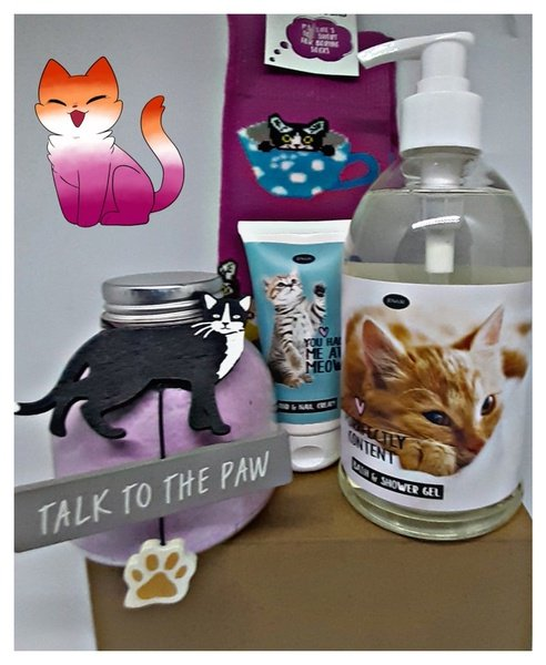Here kitty gift box picture