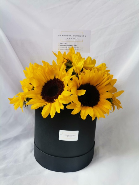 Mini sunflower hatbox arrangement picture