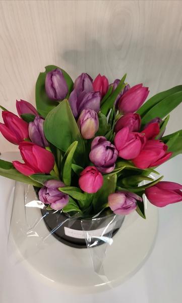 Hatbox tulips picture