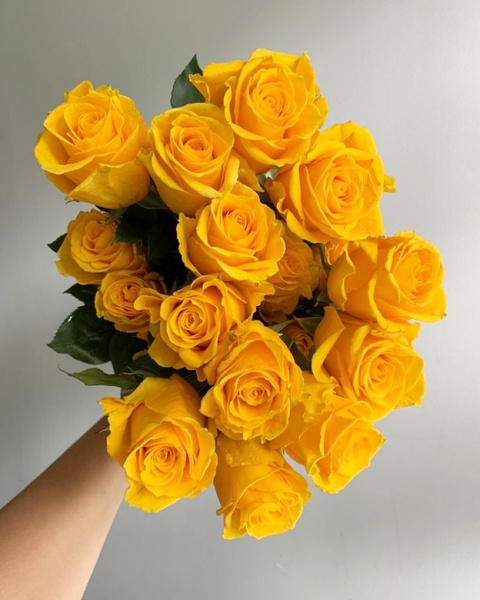 20 luxury  rose bouquet picture
