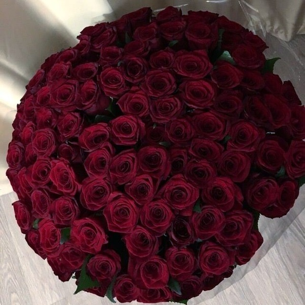 100 red luxury rose bouquet picture