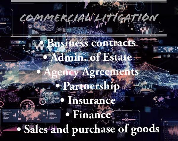 Commercial Litigation picture