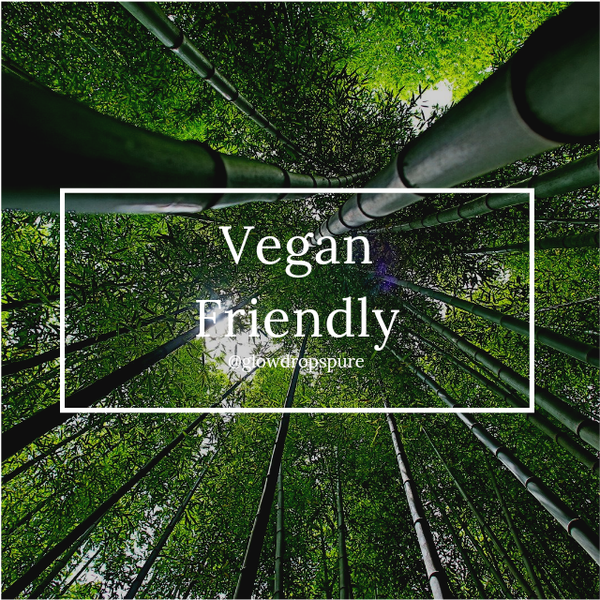 Vegan Friendly picture