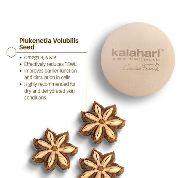 Kalahari Omega Plus Complex picture