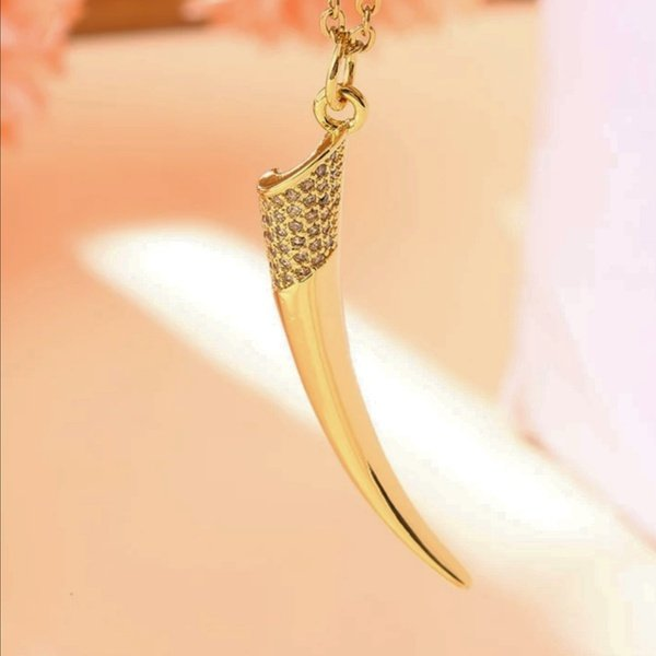 Cornet horn necklace picture