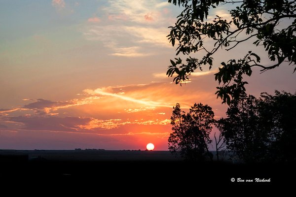 African bushveld sunset #7 picture