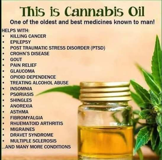 Golden deal cbd hempseed oil picture