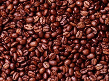 Coffee seeds picture