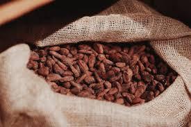 Cocoa from uganda picture