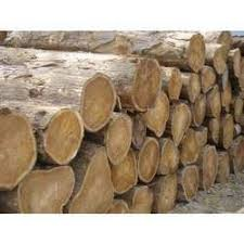 Wood / timber picture