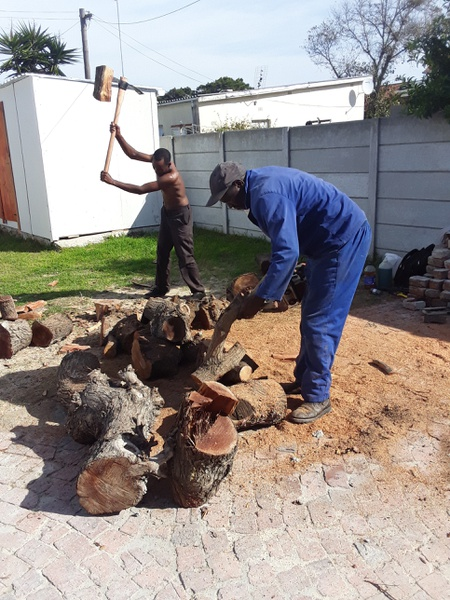 Wood chopping/splitting picture