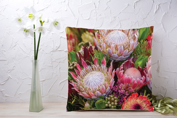 Coo8 cushion picture