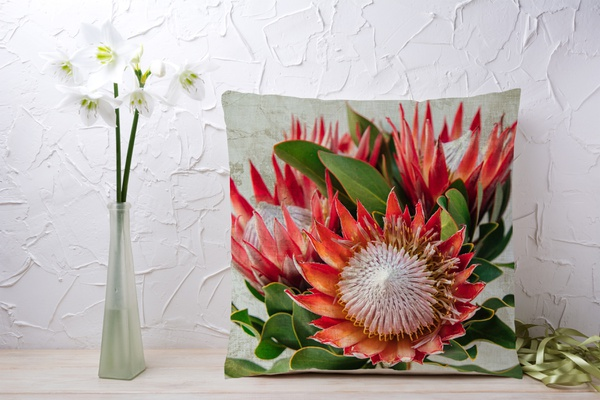 C010 cushion picture