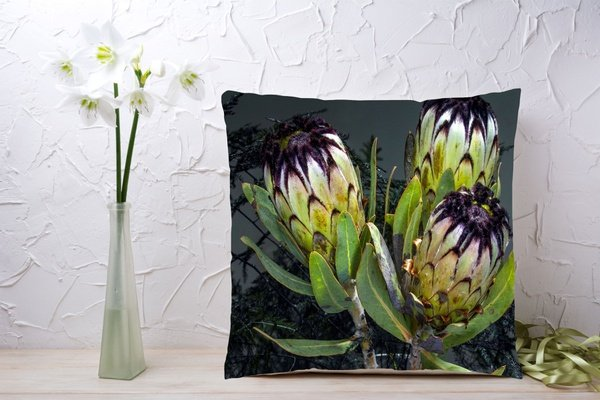 C011 cushion picture