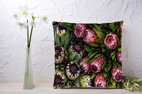 C012 cushion picture