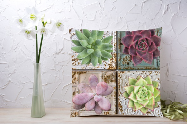 C020 cushion picture
