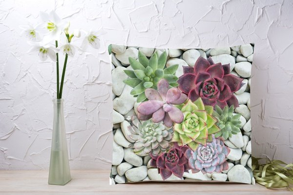 C021 cushion picture